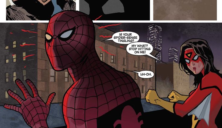 Web-Haters: 15 Superheroes Who DETEST Spider-Man   CBR