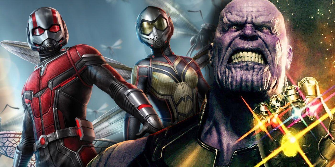 MCU: Ant-Man Is the Infinity Saga's MVP | CBR