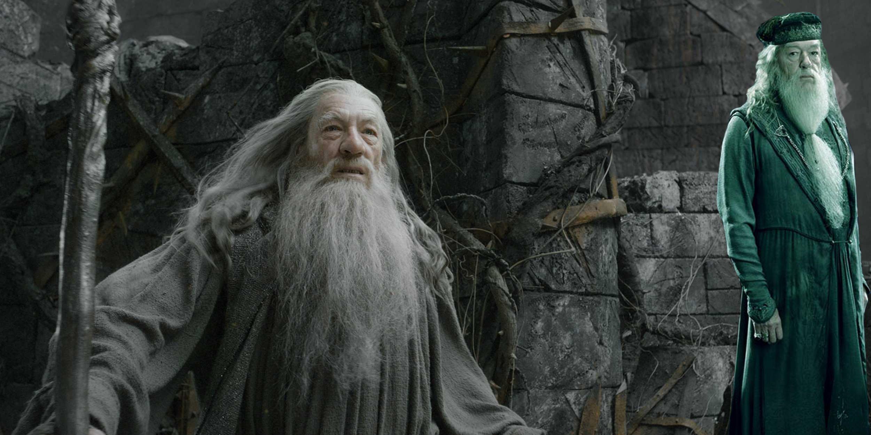 Gandalf vs Dumbledore: George R.R. Martin Know Who'd Win