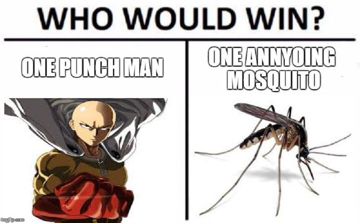 One Punch Man: 10 Hilarious Saitama Memes As Powerful As He Is