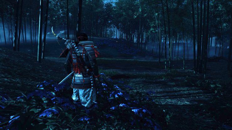 Flores azules en el bosque