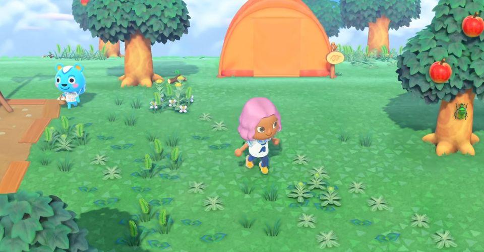 Animal Crossing New Island