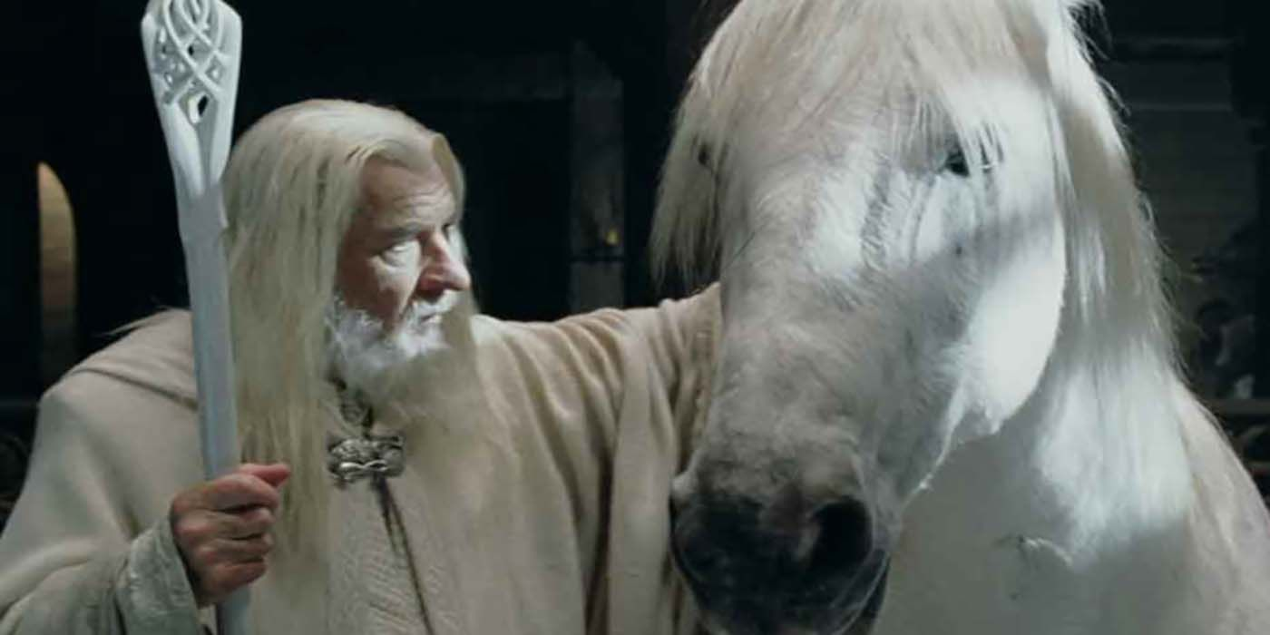 Lord of the Rings: Shadowfax's Origin, Explained | CBR