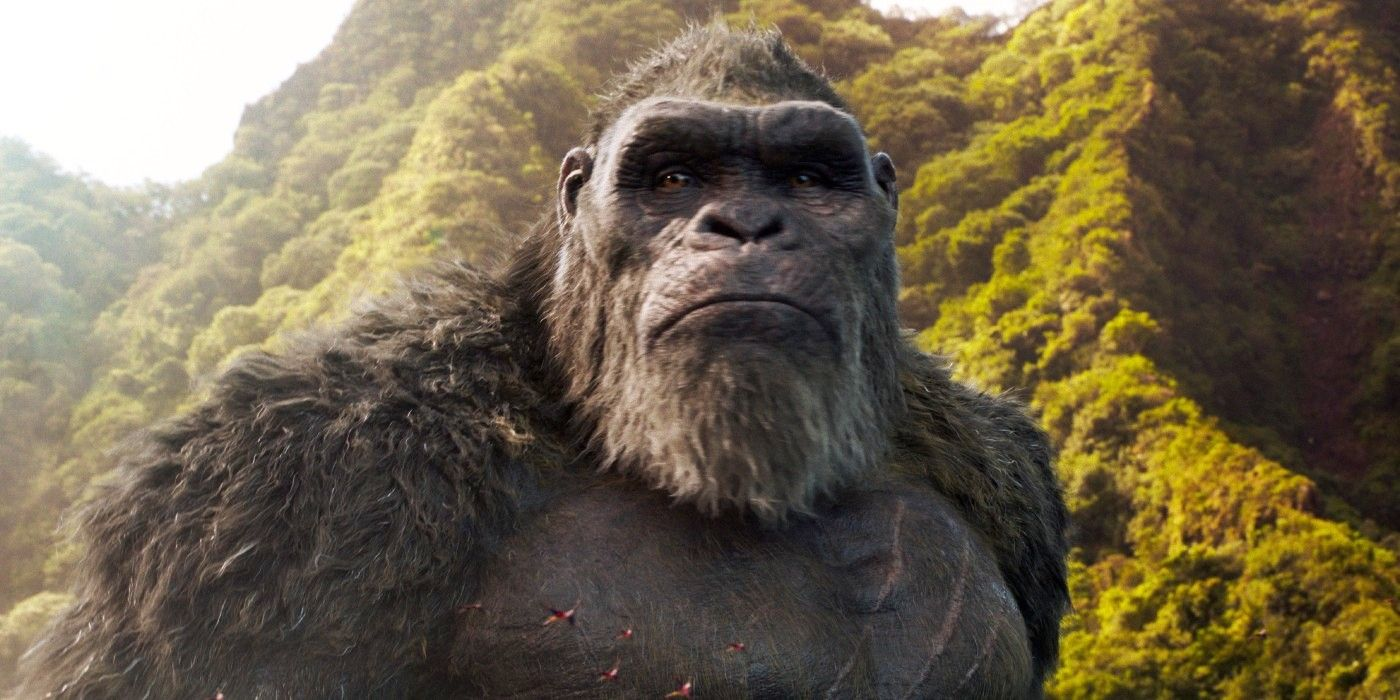 Godzilla Vs. Kong Director Teases Sequel Plans   CBR