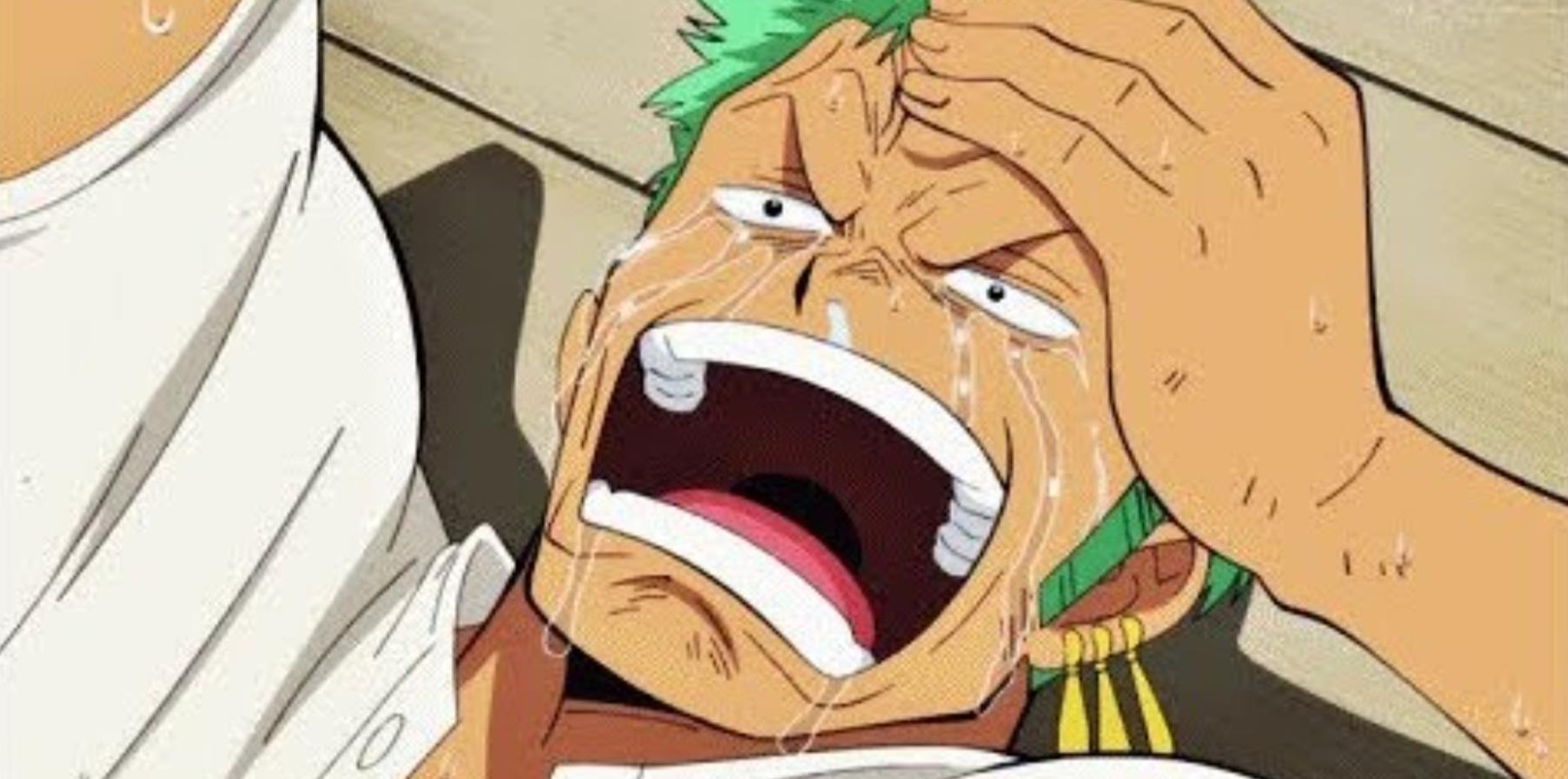One Piece: 9 Coisas que os Companeiros de Luffy aprenderam com ele 1